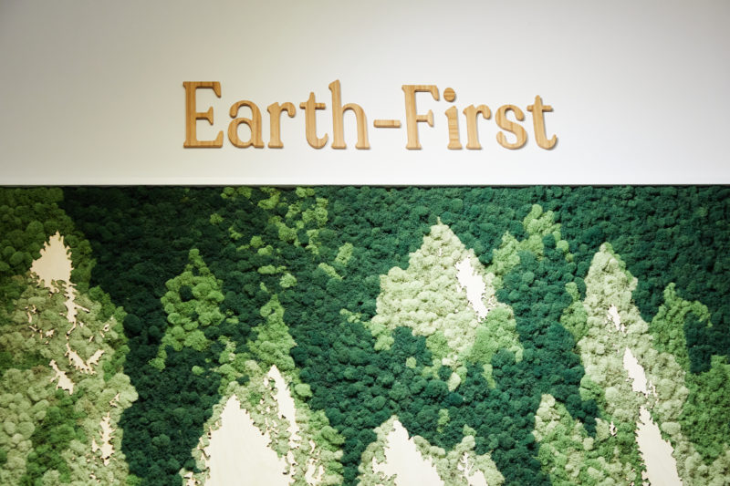 earth-first moss wall