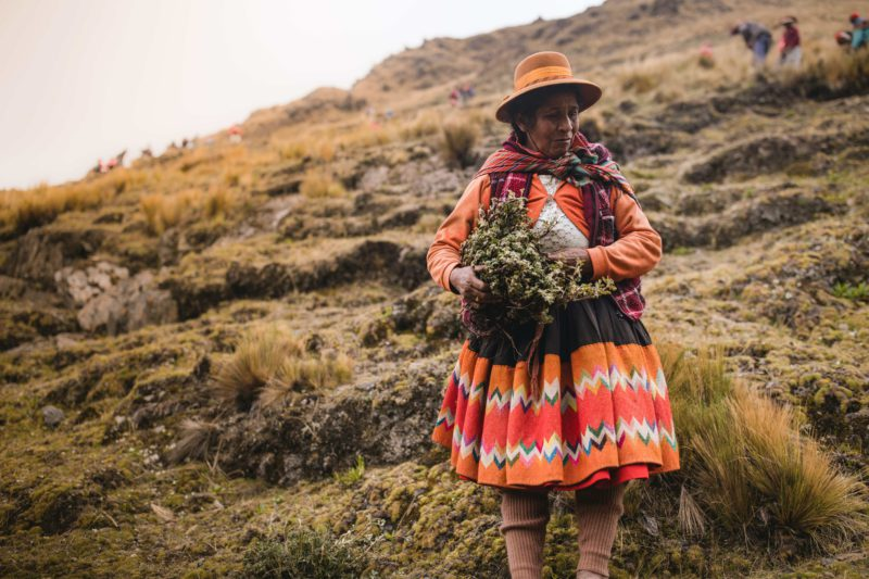 Woman with seedlings