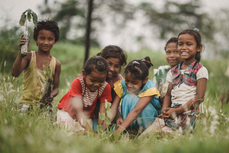 groups of kids smiling with seedling