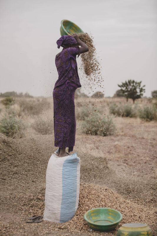 woman pouring peanut husks