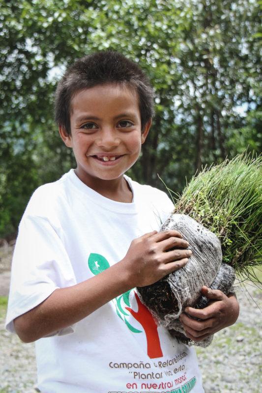 child holding sapling